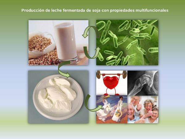 Que alimentos tienen soja fermentada