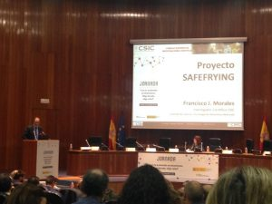 Proyecto Safefrying