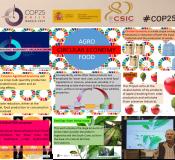 Presentación de trabajos de investigación realizados en el ICTAN durante COP25