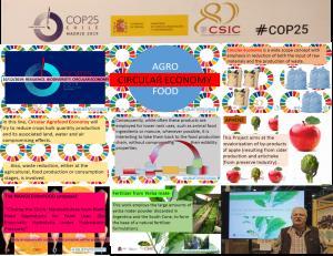 1 COP25